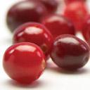 Kranberry