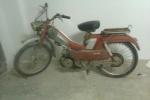 suave1981