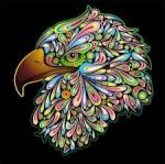 EagleHawkBudgieSmuggler