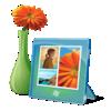 Hình ảnh - Pictures
