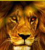 LionKingMax