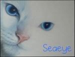 Seaeye