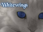 Whitewings
