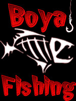 Boya321