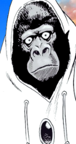 Gorilla Joe
