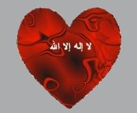 منصورة والجميع 2107-68