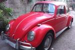escaravito65