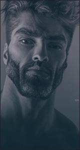 Tyler N. Mammadyarov