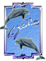 etoile77