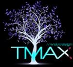 T:MAX:WEBDESIGN