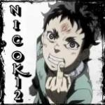 Nicok12