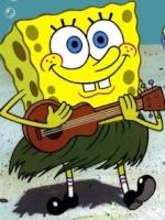 Bob a spunga