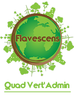 Flavescens