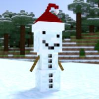 SnowCrazii