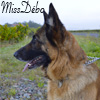 MissDébo
