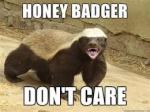 HoneyBadger