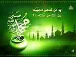 محمدعلى الخضرى