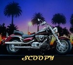 scoopy1