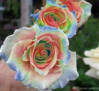 Flor do Brasil