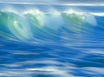 Surfeur44