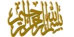م/ محمد نظمي