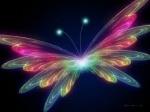 الفراشة الملونة