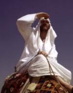Ibnu Sabil