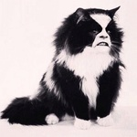 catabbath