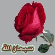 ri7abe par kader  3142946981
