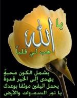إنعام أبو محمود