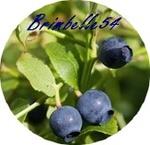 brimbelle54