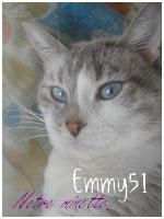 Emmy51