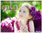ربى الاسلام