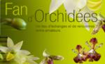 orchidEmi76