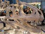 Metallisuchus