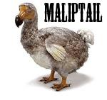 Maliptail