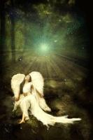 Angel F
