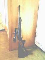 Armes de chasse 16215-2