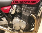 roxanteam
