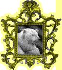 Paul.Art.Bear