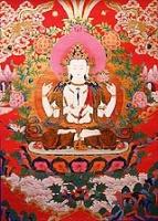 Rencontres de la Sangha L'Arbre des Refuges Avalok11