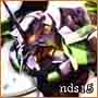 nds15