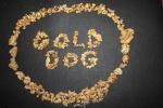 golddog
