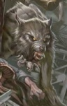 Thewolfbull