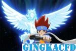 Gingkacfd