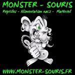 monster-souris
