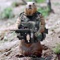 Huntersman