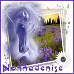 nonnadenise