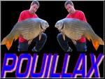 pouillax