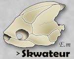 skwateur
